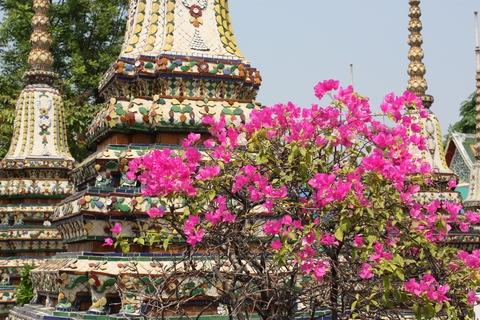 bangkok-wat-pho-flowers-near-stupas