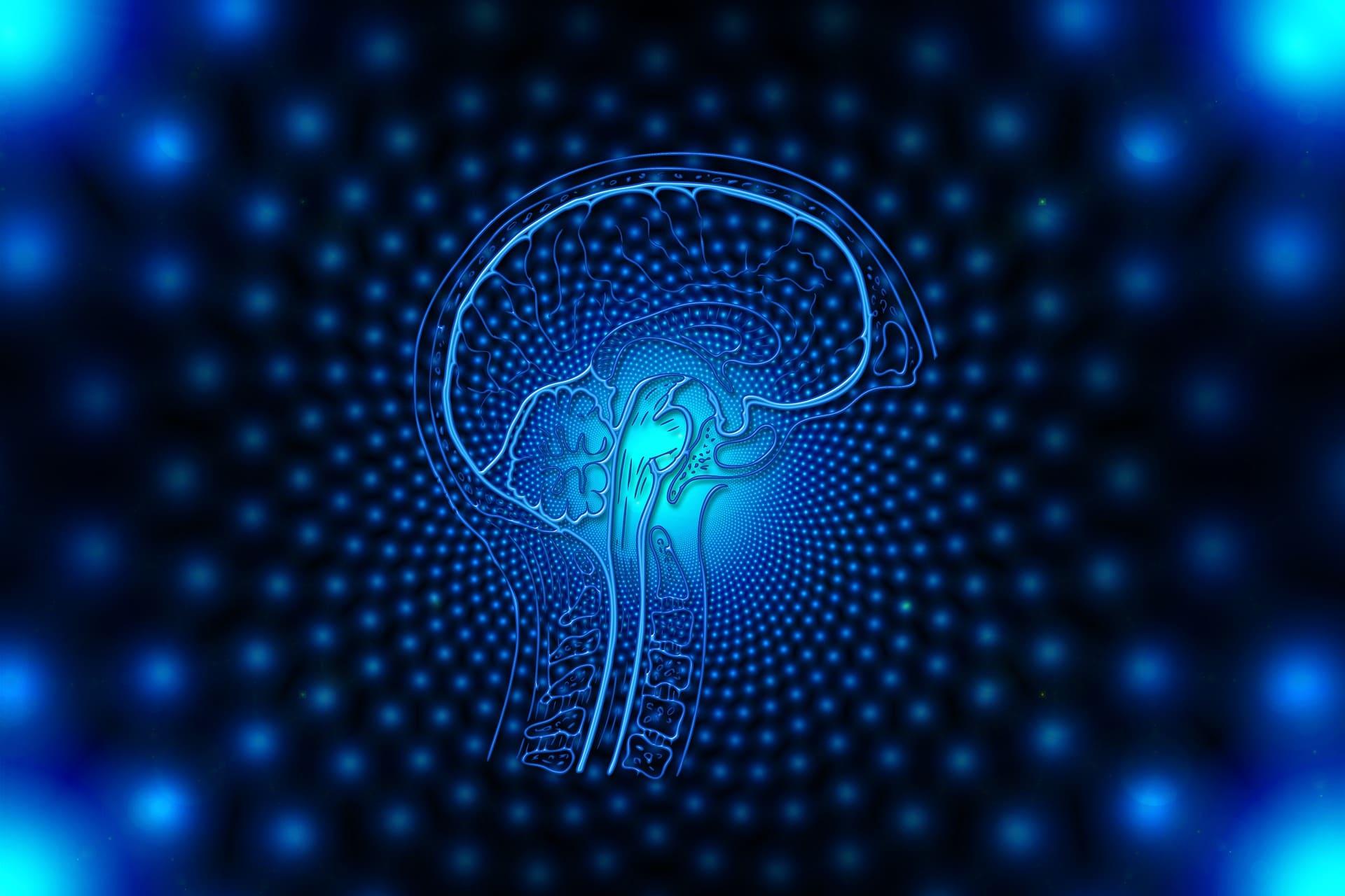 optimizing brain cycles