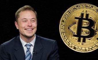 Bitcoin's And Elon Musk's Ultimate Antifragile Test