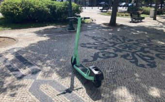 Do Electric Scooters Grow On The Streets?